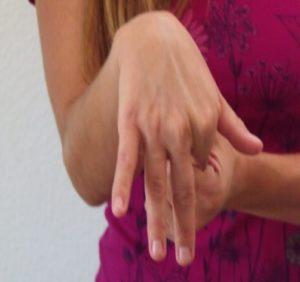 Finger Extensors
