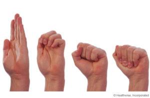 hands doing Tendon Glide
